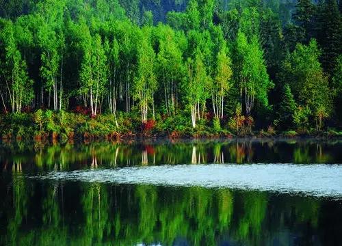五营国家森林公园(伊春)-黑龙江人也未必知道的黑龙江景色